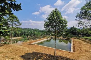 Bán đất khu nghỉ dưỡng ở xã Yên Bài, huyện Ba Vì, Hà Nội