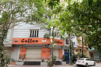 Cho thuê nhà 2 mặt tiền đẹp tại Phạm Thận Duật, làm văn phòng, cà phê, ở, kết hợp đa mô hình