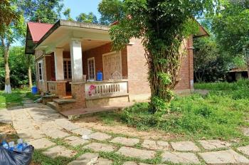 Bán lô đất 3590m2 ở Cư Yên, Lương Sơn, Hoà Bình, sẵn khuôn viên nhà ở view cực đẹp