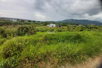 Chính chủ bán 1.5 sào đất view đẹp Lộc Châu, Bảo Lộc, có sẵn 300m2 thổ cư