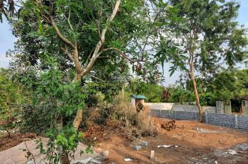 Bán 1341m2 Vuông đẹp, trung tâm xã Nhuận Trạch, Lương Sơn, Hòa Bình