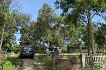 Chính chủ bán đất Legaci hill  MT 25m 1 ở Lương Sơn Hòa Bình giá đầu tư. LH 0983975882