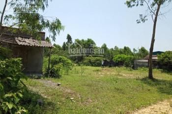 Ngân hàng đang xử lý bán 900m2 đất xã Kỳ Trinh, huyện Kỳ Anh, Hà Tĩnh, SĐ