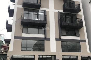 Tôi có căn biệt thự song lập tại Hào Nam cần bán. DT 196m2, mặt tiền 9m
