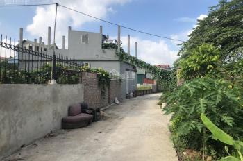 Cần bán vài lô đất đấu giá tại Kim Sơn, đường 5m, giá hợp lý nhất khu vực