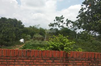 Bán 3 sào đất thổ cư tại Cổ Đông, Sơn Tây, Hà Nội, giá chỉ 1tỷ2. View cánh đồng, ao thông thoáng