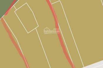Cần bán xưởng 771m2 mặt tiền đường 5, Linh Xuân, Thủ Đức. 37 tỷ, SHR