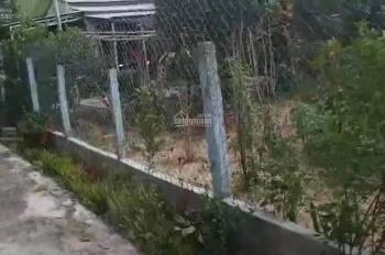 Bán trang trại nhà vườn sinh thái Hòa Ninh 2400m2 đang thu hoạch cây trái hàng năm