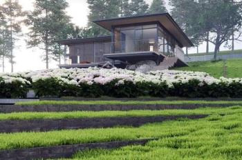 Đất biệt thự nghỉ dưỡng Bảo Lộc, sát thác Đam'Bri, giá chỉ từ 2,4tr/m2, có sẵn thổ cư