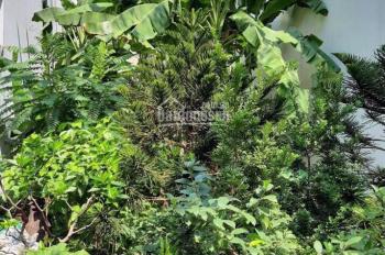 Đất OĐT 4 x 20m, sổ riêng, đường Số 4 KDC Nam Hùng Vương, Bình Tân - Hạnh - 0907542157