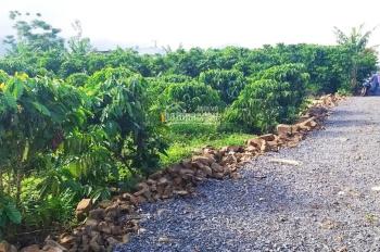 Bán lô đất view suối cực đẹp, nở hậu. 1411m2, Lộc Châu, Bảo Lộc, giá 1 tỷ 500tr