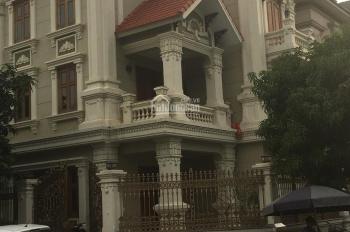 Cần bán biệt thự lô góc BT 04 Việt Hưng, DT 245m2