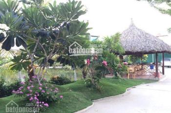 Bán nhà biệt thự vườn tại Nhị Bình, Hóc Môn, diện tích 4.200m2, ngang 70x60m