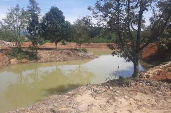 11000m2, suối chạy giữa vườn cách trung tâm TP Bảo Lộc 15km