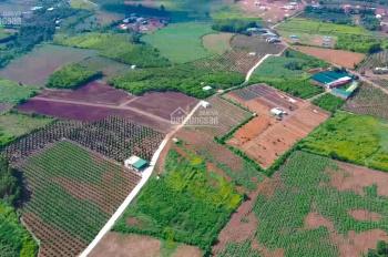 Bán đất sào Hưng Thịnh, Trảng Bom, 1000m2, giá 790 triệu