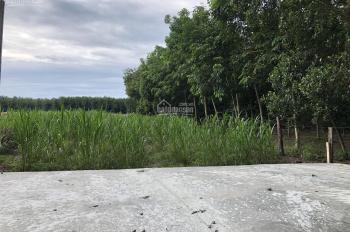 Cần vốn làm ăn nay bán lô đất ấp 3 thị trấn Chơn Thành giá rẻ nhất khu vực DT 580m2 TC 600tr SHR