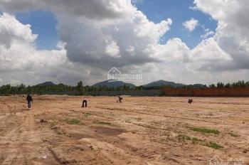 Bán đất chính chủ mặt tiền đường 20m Bà Rịa