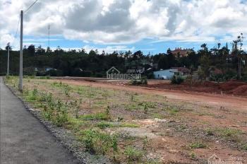Đất nền khu nghỉ dưỡng, SHR, chính chủ, TP Bảo Lộc