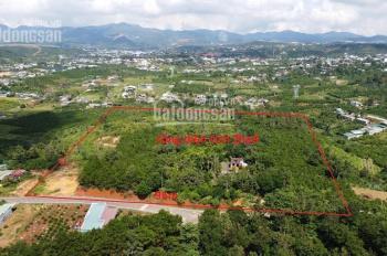 2,9ha cây ăn trái đang thu mạnh, có 96m2 mt Đinh Công Tráng, cách trung tâm TP Bảo Lộc chỉ 2km