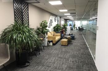 Cho thuê văn phòng trọn gói tầng 11 tòa nhà Việt Á, Duy Tân, Cầu Giấy DT 11m2 - 20 - 50 - 100m2