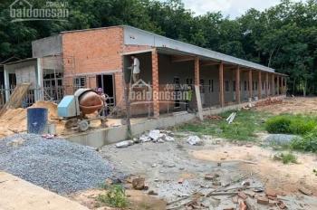Cần tiền chữa bệnh bán gấp lô đất đủ diện tích xây 4 dãy trọ