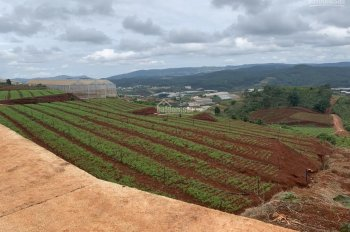 Gấp, bán đất thổ cư vị trí rất đẹp + view thung lũng - trực thuộc thành phố Đà Lạt