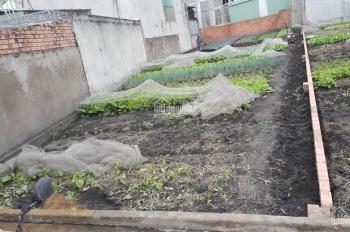 Bán mảnh đất 300m2 làm vườn giữa đô thị Biên Hòa, nằm trong quy hoạch đất ở đô thị, đất màu hồng
