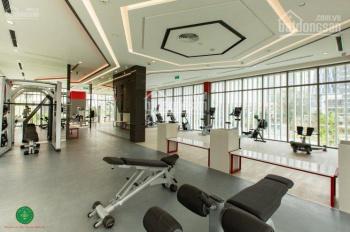 Quản lý cho thuê nhiều căn hộ Saigon South Residence Phú Mỹ Hưng, giá từ 10tr/th, Loan 0909.686.994