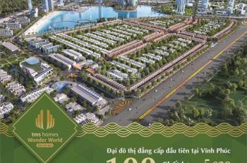 Dự án TMS Đầm Cói Vĩnh Yên ra hàng đợt đầu, giá đầu tư chỉ từ 1 tỷ/lô. LH 0983650098