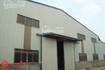 BĐS: Điền Thịnh Phát cho thuê kho - xưởng (giá siêu rẻ) quận Bình Tân
