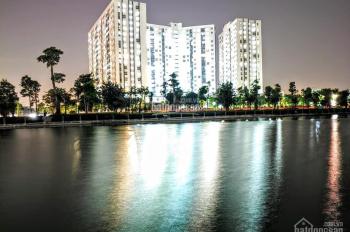 Bán đất biệt thự Thanh Hà Cienco 5 giá ưu đãi tốt nhất thị trường LH: 0977503198