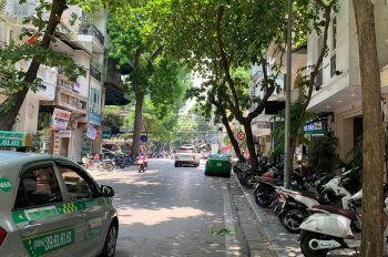 Bán gấp nhà mặt phố, kinh doanh, ô tô Cảm Hội - quận Hai Bà Trưng 73m2 x3T, giá chỉ 11 tỷ