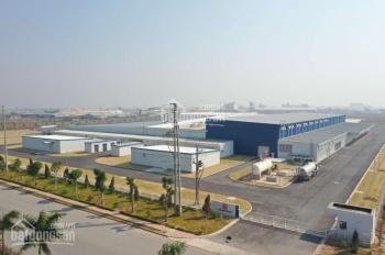 Bán đất công nghiệp 50 năm tại Thái Dương, Thái Thụy, Thái Bình. DT 2ha