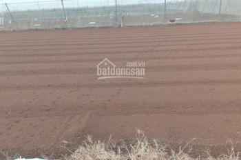 Bán đất công nghiệp 50 năm tại Thanh Miện, tỉnh Hải Dương. Diện tích 45ha
