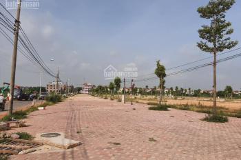 Bán đất đấu gía tại Tự Lập - Mê Linh - Hà Nội