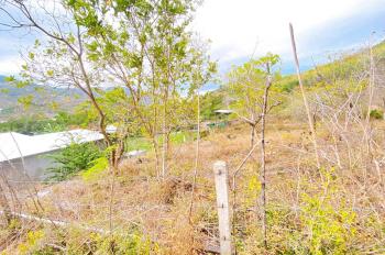 Tôi chính chủ kẹt tiền cần bán lô đất biệt thự nhà vườn của gia đình 2000m2, 1tỷ350tr thương lượng