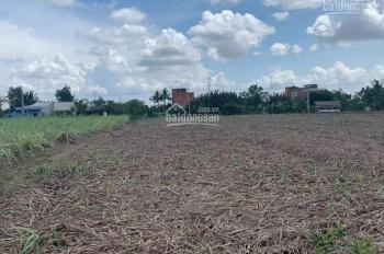Bán gấp trong tuần (đến 10/08) lô đất công ĐXH Phước Khánh, Nhơn Trạch, Đồng Nai, hướng Đông Nam