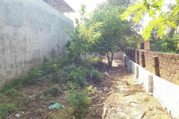 Nhanh tay sở hữu lô đất 177m2 siêu hiếm tại trục chính Phú Hữu, kinh doanh được luôn