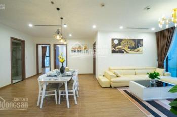 Miss Vân Anh 0962.396.563 bán 02 căn hộ chung cư The Golden Palm, DT: 105m2 & 125m2 3PN 2WC TK đẹp