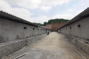 Cần bán trại lợn, 7ha tại xã Cao Dương, Lương Sơn, Hoà Bình