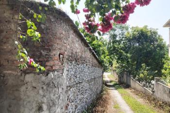 Bán nhà vườn hơn 5000m2 đất thổ cư + đồi sổ hồng, khuôn viên hoàn thiện ngay khu Chợ Bến, Lương Sơn