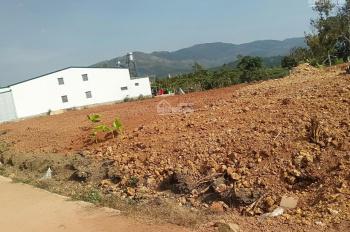 Bán lô đất hạ giá Lộc Châu, Bảo Lộc, Lâm Đồng cách đường tránh 50m