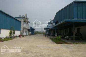 Cho thuê kho xưởng tại thị trấn Thường Tín
