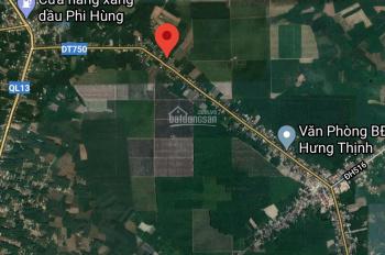 Đất Tân Long, Phú Giáo, giáp KCN Bàu Bàng
