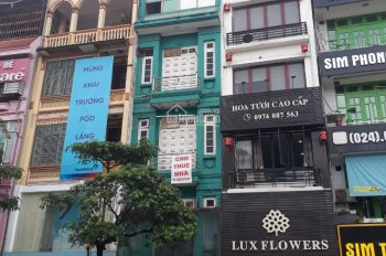 CC cho thuê nhà MP phố Thuỵ Khuê, DT 60m2 * 7 tầng, thông sàn, thang máy, tiện KD. Giá 35 tr/th