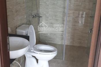 Cho thuê chung cư 80m2 03 PN, 02 WC HomeLand Thượng Thanh Long Biên, Hà Nội, giá 8 triệu/th