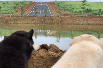 Bán đất nền Bảo Lộc gần thác du lịch Đambri. Giá siêu rẻ