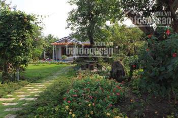 Thông báo khẩn: Bán rẻ biệt thự vườn trái cây gần KDL Nam Cát Tiên, huyện Tân Phú, tỉnh Đồng Nai