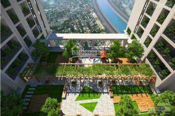 Full rổ hàng căn hộ Bcons Garden trả trước từ 330tr sở hữu ngay căn 2PN, hỗ trợ vay lãi suất ưu đãi