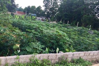 Bán đất Tân Xã, Thạch Thất, khu CNC Hòa Lạc, sổ đỏ chính chủ, mặt đường liên xã ô tô